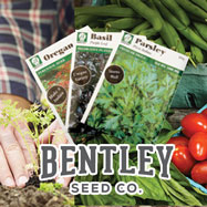 Bentley Seed Co