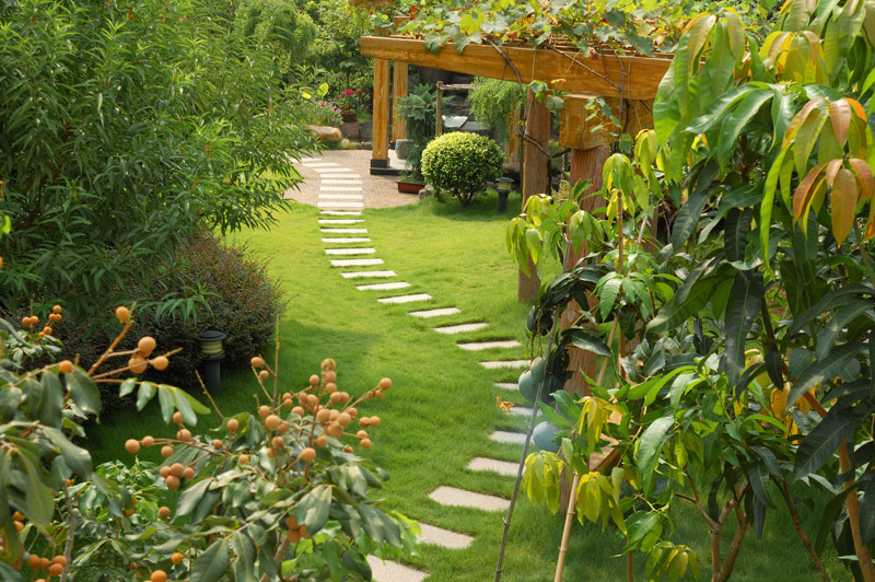 How to create a garden oasis gnh lumber co for Home and garden design center colorado springs