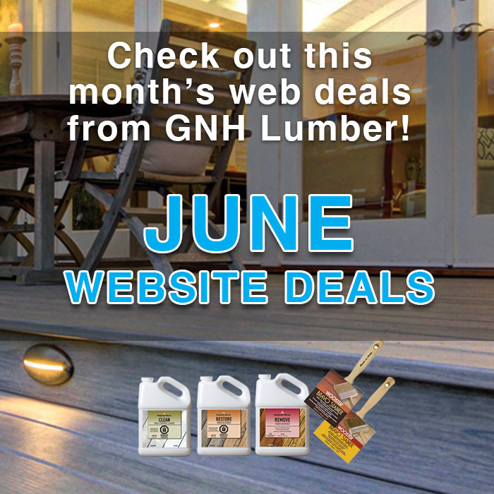June Web Sales