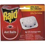 Raid Ant Traps