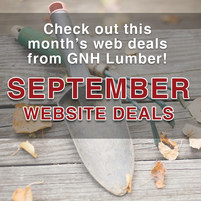 september web sales