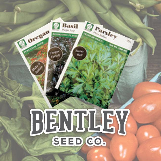 Bentley Seeds