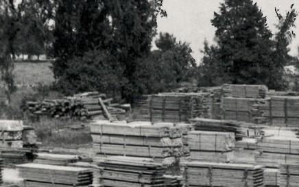 Stacks of lumber in lumberyard