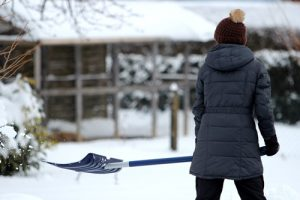 Read the article: Top 9 Snow Removal Tips for Your Home