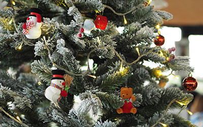the-christmas-tree-1081317_1920