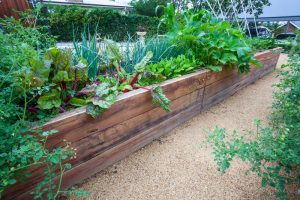 Read the article: DIY: How to Create a Raised Garden Bed
