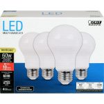 Feit 60W A19 Bulbs, Daylight