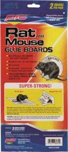 Rat & Mouse Glue Boards