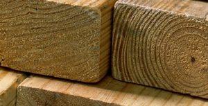 Lumber at GNH