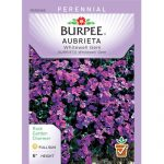 Burpee Seed Packets
