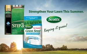 SALE on Scotts Lawn Food & Grass Seed in July!