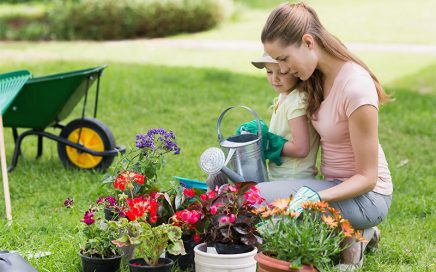 Lawn and Garden Supplies at GNH