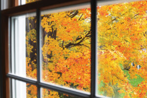 Read the article: How to Choose Replacement Windows
